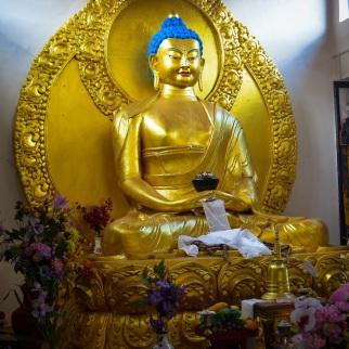 Shanti Stupa, Ladakh (12)