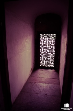 Humayun's Tomb, Delhi (10)