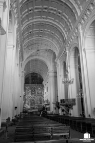Se Cathedral (3)