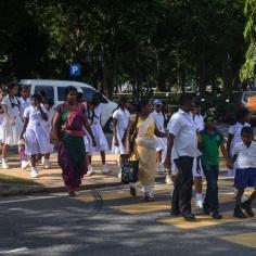 Srilanka_road crossing (2)