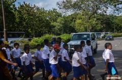 Srilanka_road crossing (3)