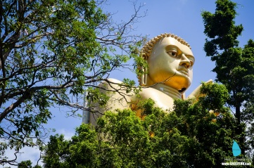 Golden Buddha at Dambulla, Sri Lanka (14)