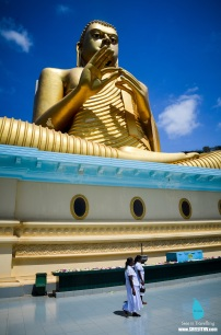 Golden Buddha at Dambulla, Sri Lanka (5)