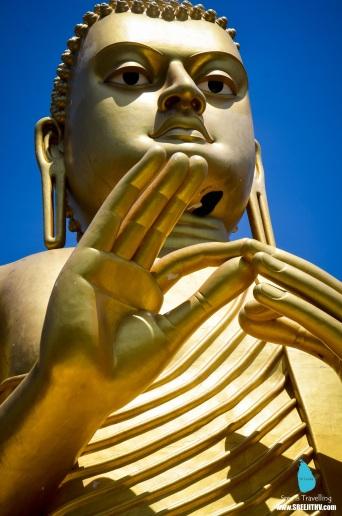 Beehive on Buddha's lower chin