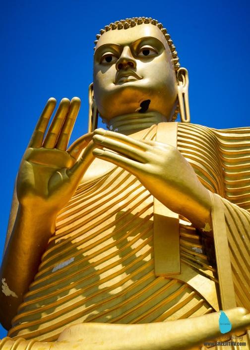 Dharma Chakra Mudra