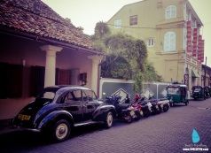 Galle (11)