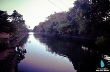 Sigiriya (4)