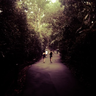 Singapore Botanical Gardens - sree is travelling (1)
