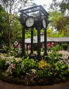 Singapore Botanical Gardens - sree is travelling (10)