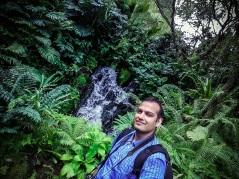 Singapore Botanical Gardens - sree is travelling (2)