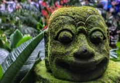 Singapore Botanical Gardens - sree is travelling (20)