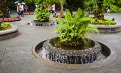 Singapore Botanical Gardens - sree is travelling (7)