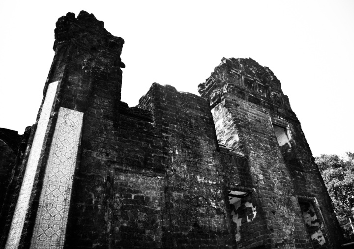 St Augustine ruins, Old Goa (8)