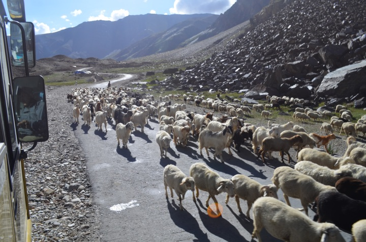 Manali-Leh highway, sree is travelling (3)