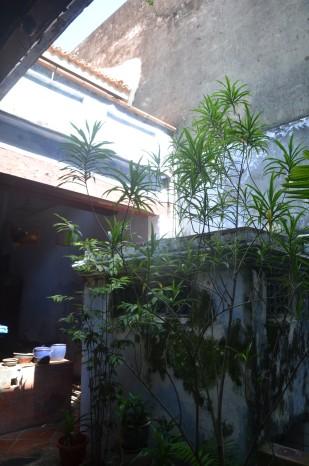 Sun Yat Sen Museum, Sree is Travelling (8)