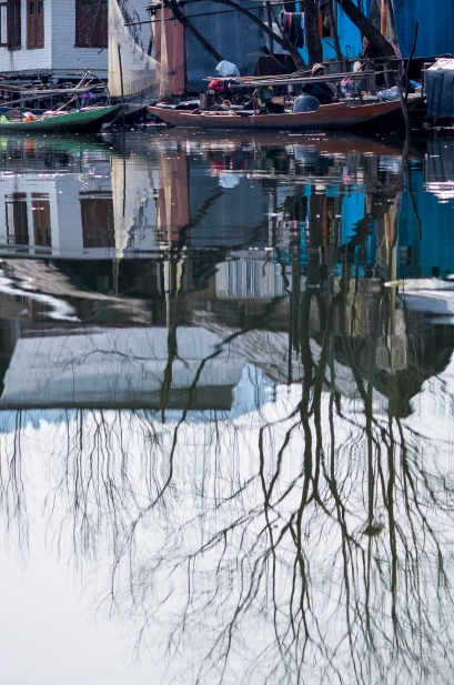 Dal Lake reflections, Sree is travelling (7)