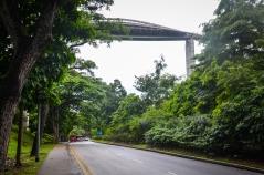 Henderson Waves Bridge, Southern Ridges, Singapore