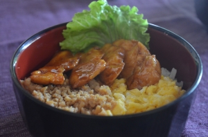 Lao food Toridon