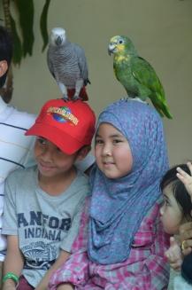 Kuala Lumpur Bird Park (1)