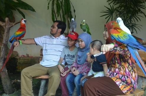 Kuala Lumpur Bird Park (2)