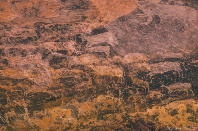 Bhimbetka rock shelters: sree is travelling