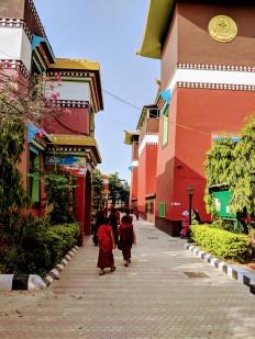 Tergar Monastery Bodh Gaya, sree is travelling